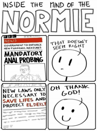 Normies.png