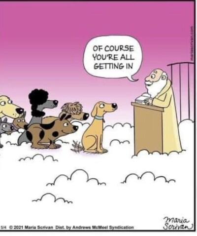 dogs-heaven.md.jpg