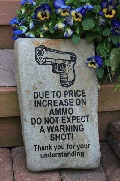 no-warning-shot.md.jpg